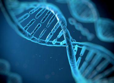 10 популярни мита за стволовите клетки – част 2