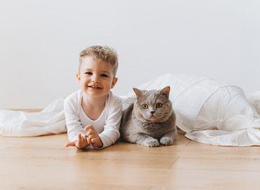Домашни любимци и бебе на път - Част 1
