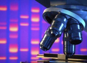 10 популярни мита за стволовите клетки – част 1