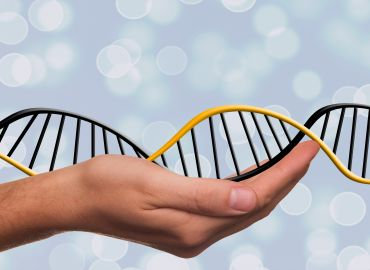 Епигенетика: как начинът на живот влияе върху генома